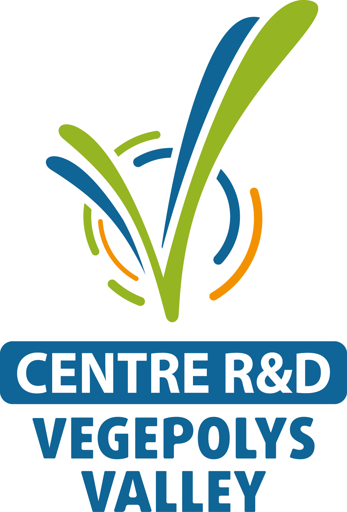LOGO CENTRE R&D VERTICAL